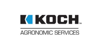 Koch2